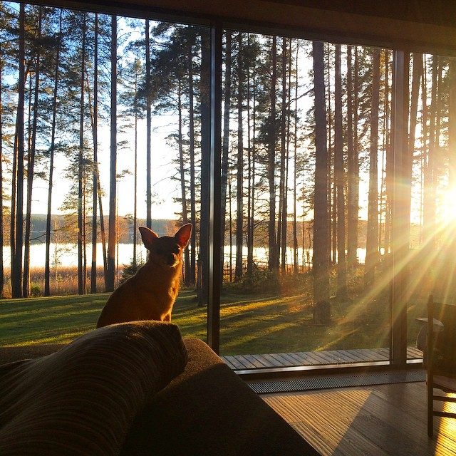 Cozy sunday inspiration